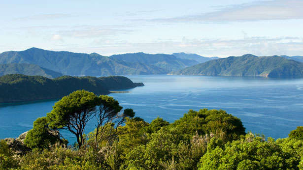 motuara-bay-new-zealand