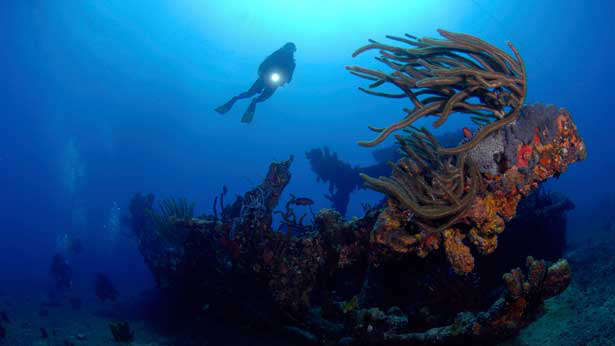 Rhone wreck British Virgin Islands