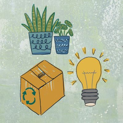 illustration of plants, a box and a light bulb